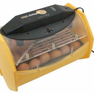 Manual Egg Incubator for Hatching 24 Chicken Eggs or Equivalent